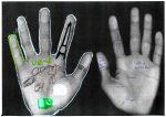 mains18